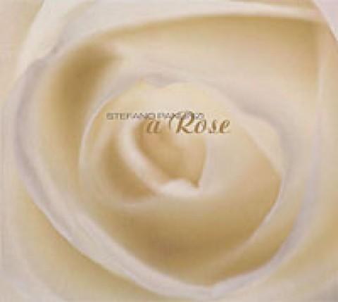 Stefano Panunzi – A Rose