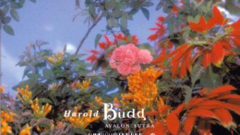 Avalon Sutra, Harold Budd's farewell album