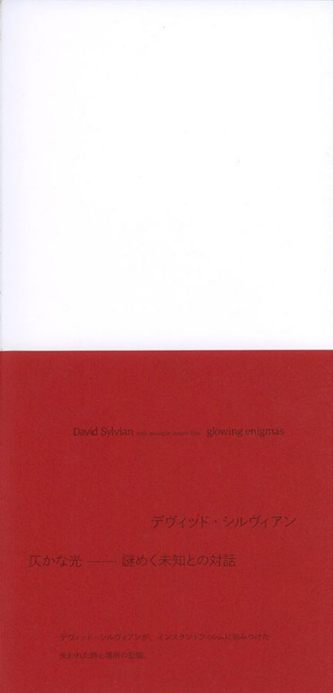 Glowing Enigmas – Exhibition Catalogue