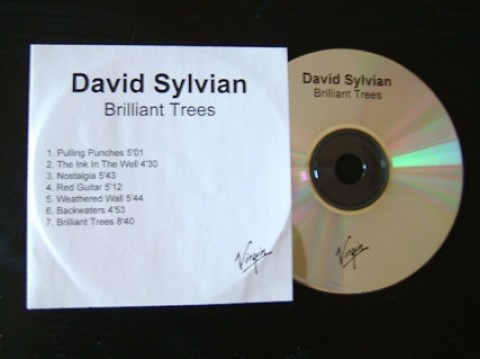 Brilliant Trees (re-issue)