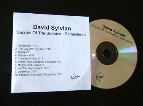 Secrets Of The Beehive (re-issue)