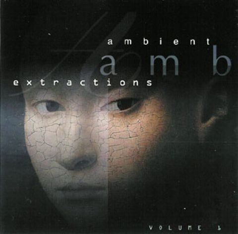 Ambient Extractions Vol.1