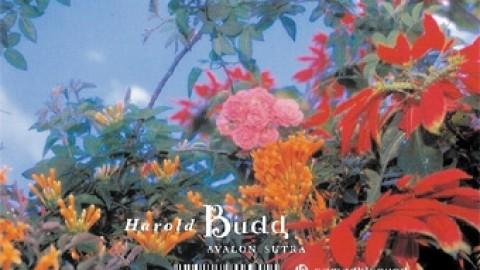 Harold Budd – Avalon Sutra