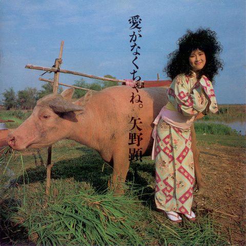 Akiko Yano – Ai Ga Nakucha Ne
