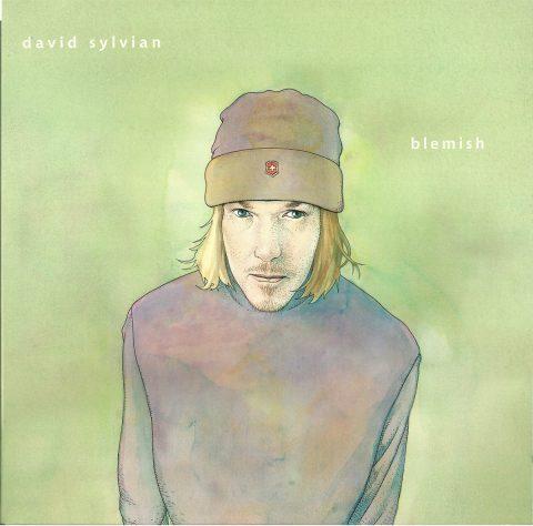 Blemish (vinyl)