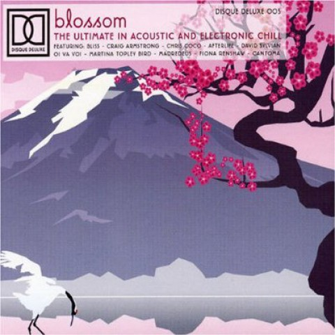 Blossom: Acoustic and Electronic Chill