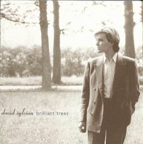Brilliant Trees (2006 re-issue)