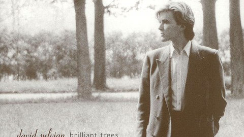 Brilliant Trees (2003 digipack re-issue)