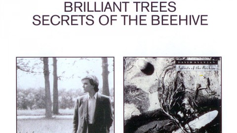 EMI 2CD set Brilliant Trees & Secrets Of The Beehive