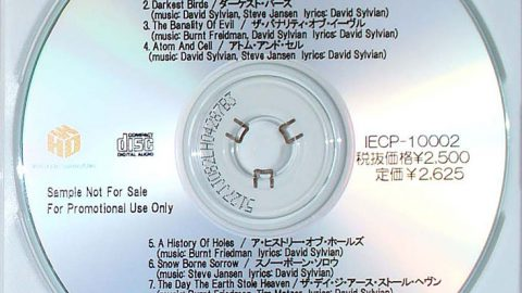 Nine Horses – Snow Borne Sorrow (Japanese promo)