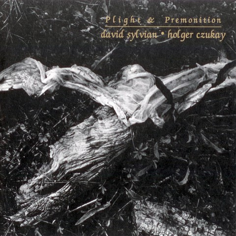 Plight & Premonition (Russia)