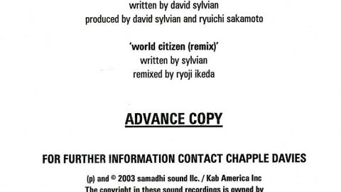 World Citizen (Samadhi Sound)