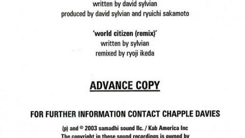 World Citizen (Samadhi Sound)