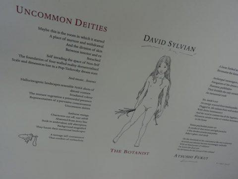 Uncommon Deities (handmade limited edition)