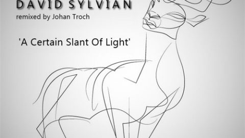 A Certain Slant Of Light (Johan Troch remix)