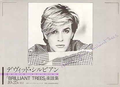 Brilliant Trees (Japanese flyer) front. Thanks to Takasaki Ririko.
