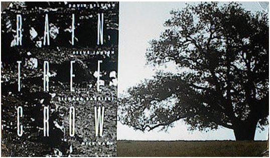 Promotional poster for the Rain Tree Crow album