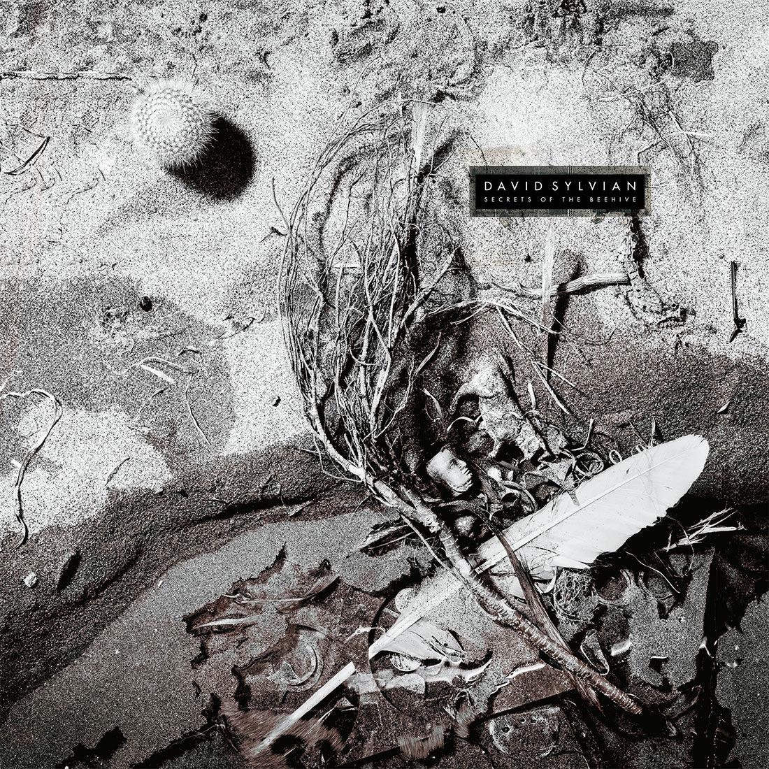Secrets Of The Beehive 2019 Vinyl David Sylvian