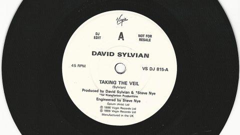 Taking The Veil (promo)