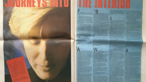 Journeys into the Interior (NME, August 1984)